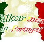 Julkalendern 2017: Välkommen till Portugal